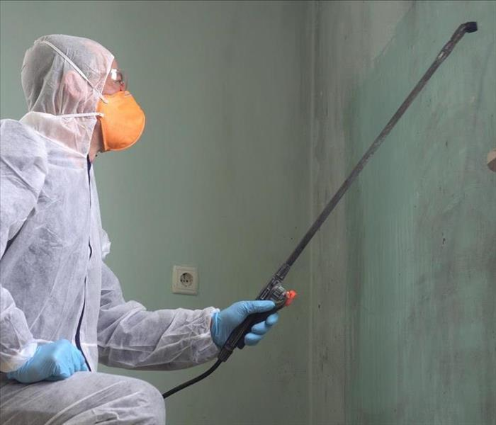Image of a professional with proper and equipment removing mold from the wall of a residential home.